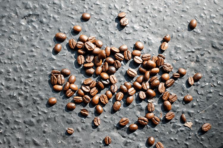 Sina Nasr - Coffee